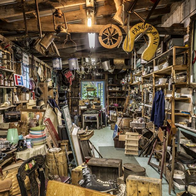 """""""Antique shop."""" stock image"""