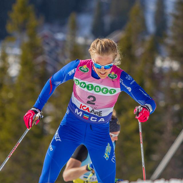 """Stina Nilsson"" stock image"