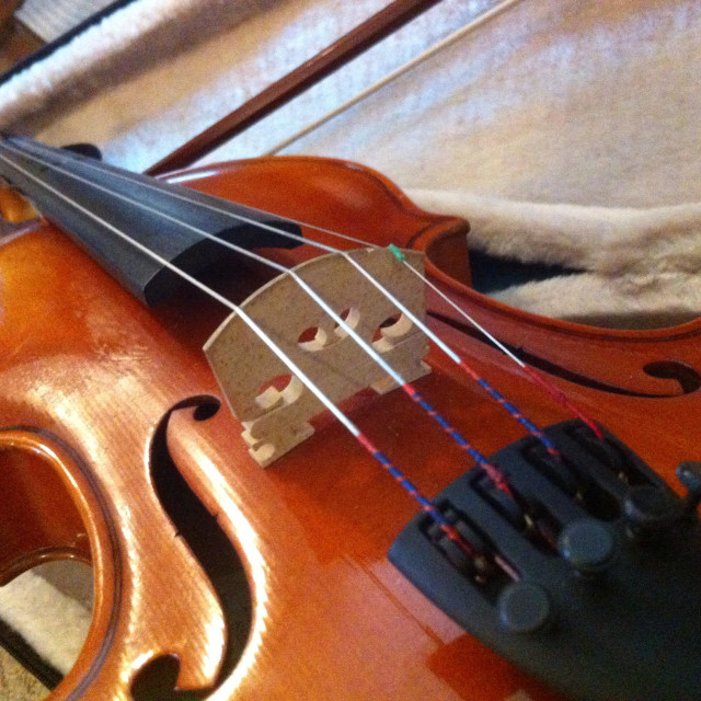"""Close up violin in case"" stock image"