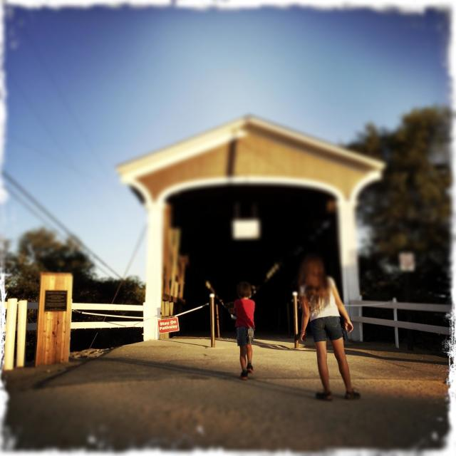 """""""A 10 year old girl and 6 year old boy look into an old covered bridge. Knights Ferry, California, USA"""" stock image"""