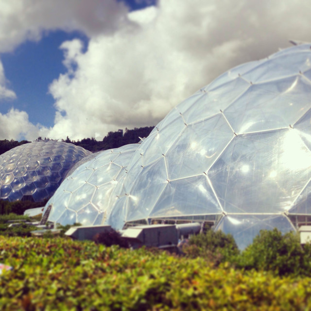 """""""Eden Project, St.Austell, Cornwall"""" stock image"""