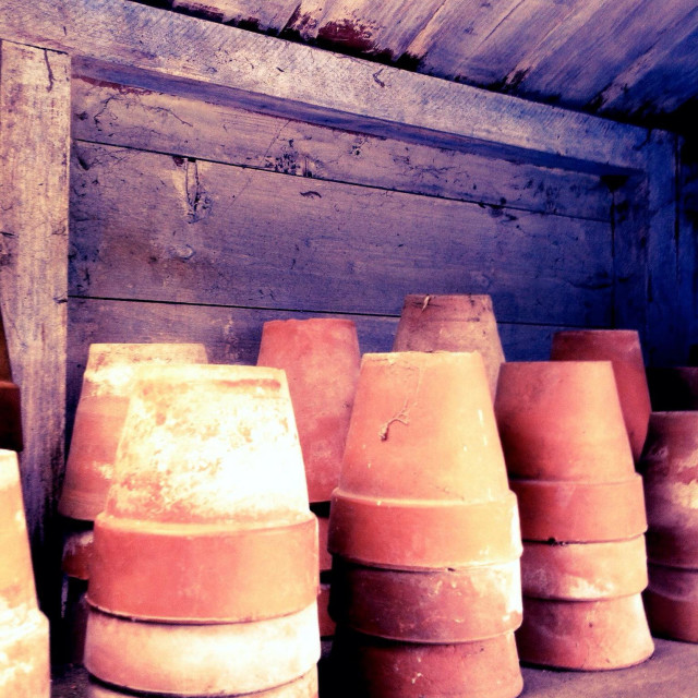 """Terracotta plant pots stacked up on a shelf in a garden shed, UK"" stock image"