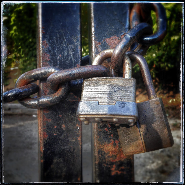 """""""Two Old Rusty Padlocks And Metal Chain Securely Lock A Gate"""" stock image"""
