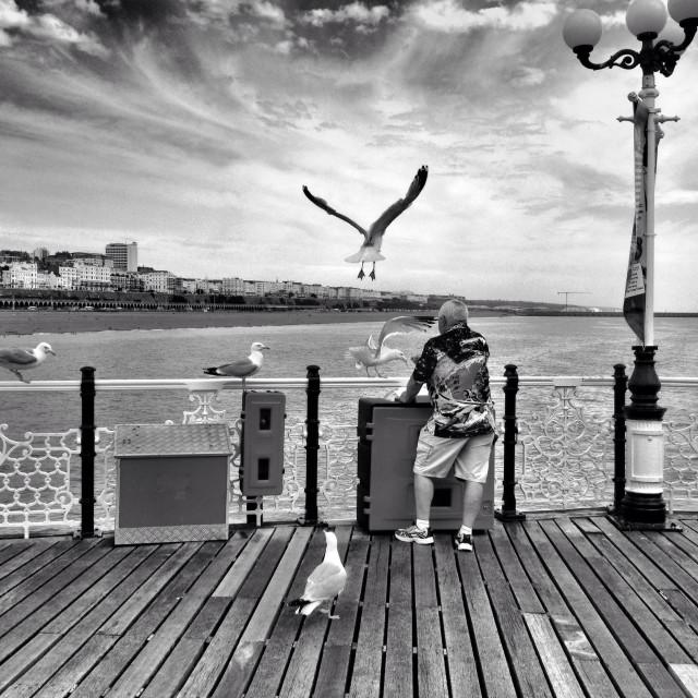 """A man feeds seagulls on Brighton Pier, England, UK"" stock image"