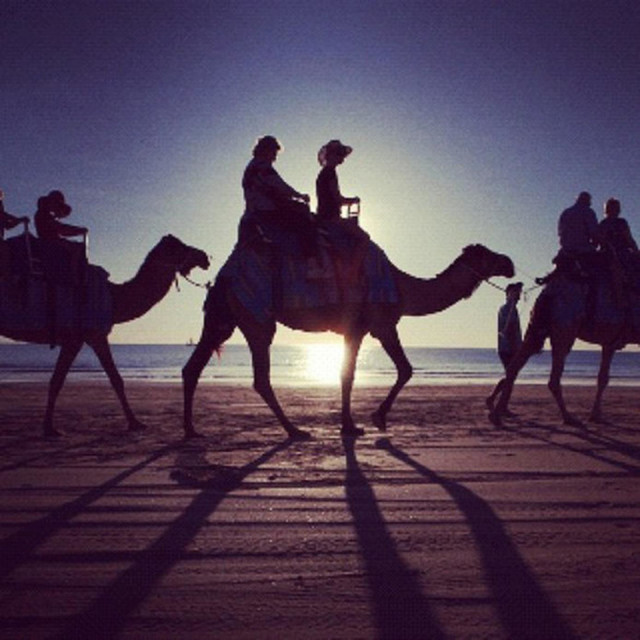 """Camel trekking on Cable beach, Broome, Western Australia"" stock image"