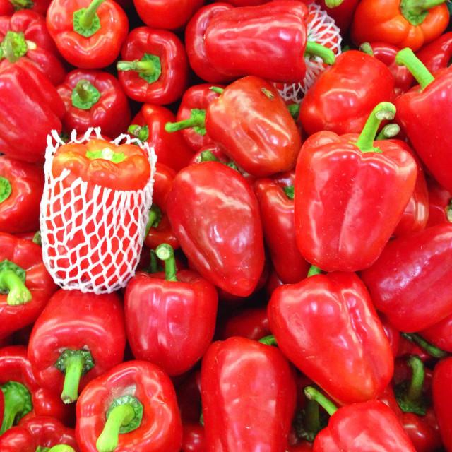 """""""Red Capsicum"""" stock image"""