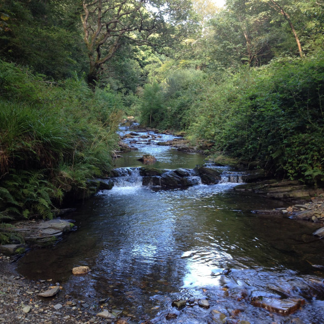 """""""River valency Boscastle. Hard to believe this was the source of devastation on 16/8/2004."""" stock image"""