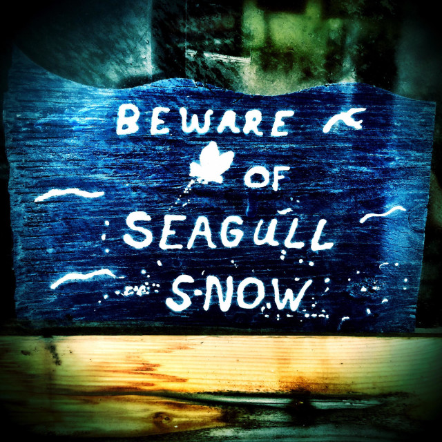 """Humorous sign on Jacksonville Beach Pier, Jacksonville Beach, Florida, USA."" stock image"