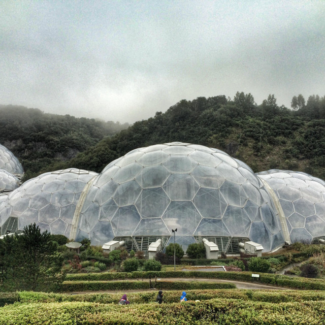 """""""The Bio Domes at the Eden Project, Cornwall"""" stock image"""