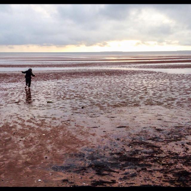 """Low tide on Prince Edward Island"" stock image"