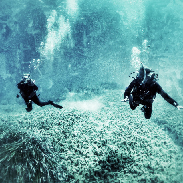 """""""Two mature scuba divers taking underwater photographs"""" stock image"""