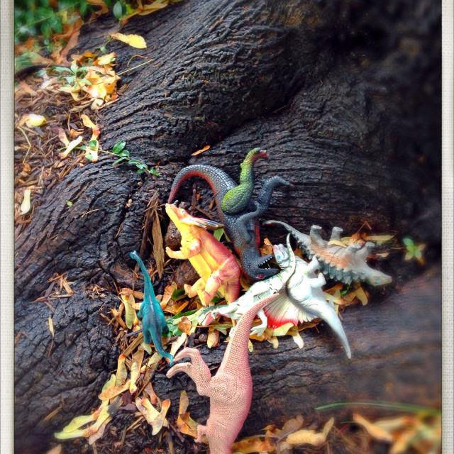 """""""A bunch of toy dinosaurs scattered under a tree."""" stock image"""