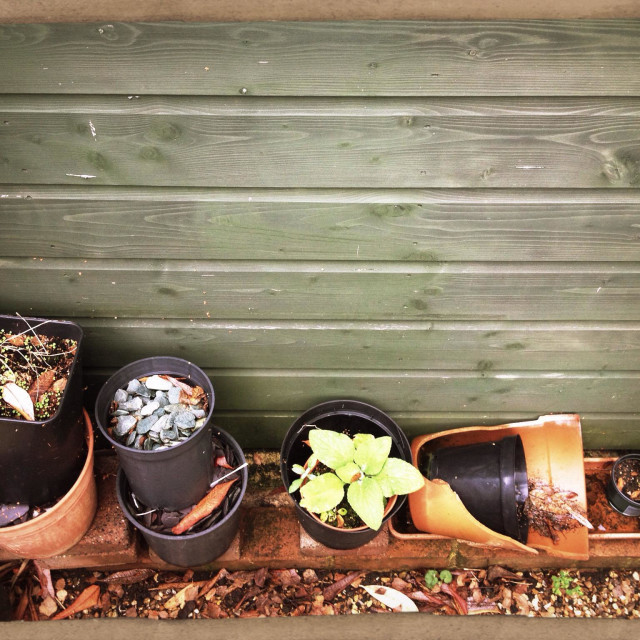 """Flower pots behind the shed"" stock image"