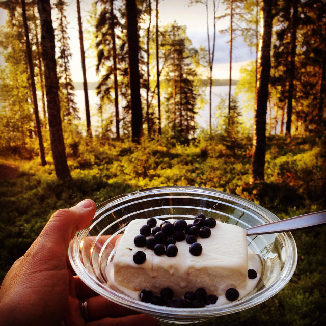 """Freshly collected blueberries from a Nordic lake summerhouse forest added to an evening ice-cream on holiday"" stock image"