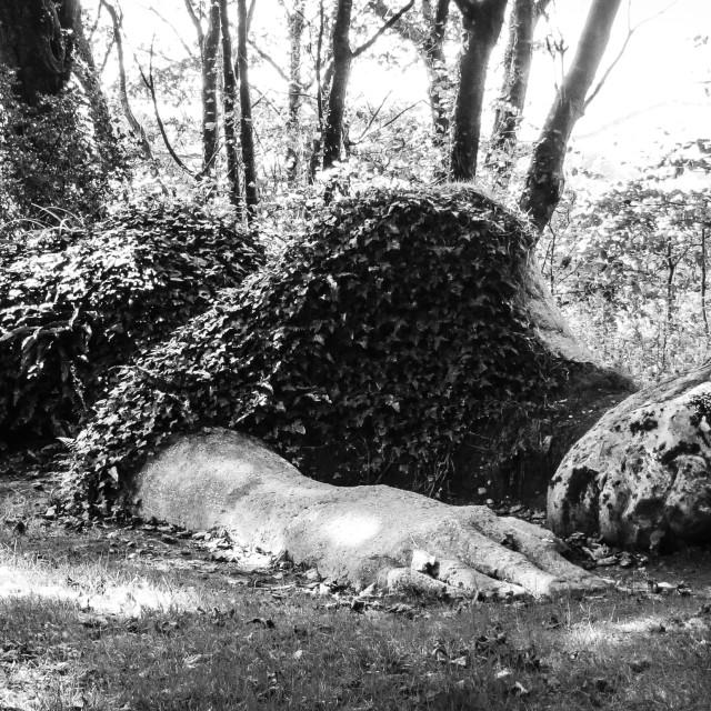 """""""Sleeping Giant"""" stock image"""