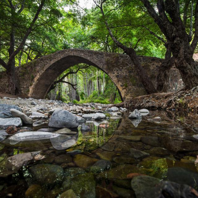 """Ancient Venetian bridge"" stock image"