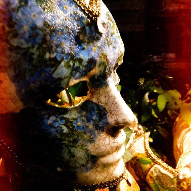 """""""Mask for Mardi Gras in Venice"""" stock image"""