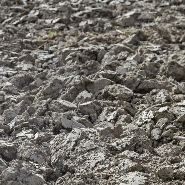 """plowed earth on a field"" stock image"