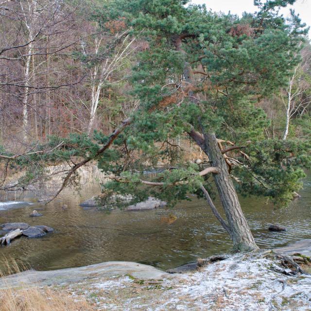 """""""Sisjon one little lake in sweden and"""" stock image"""