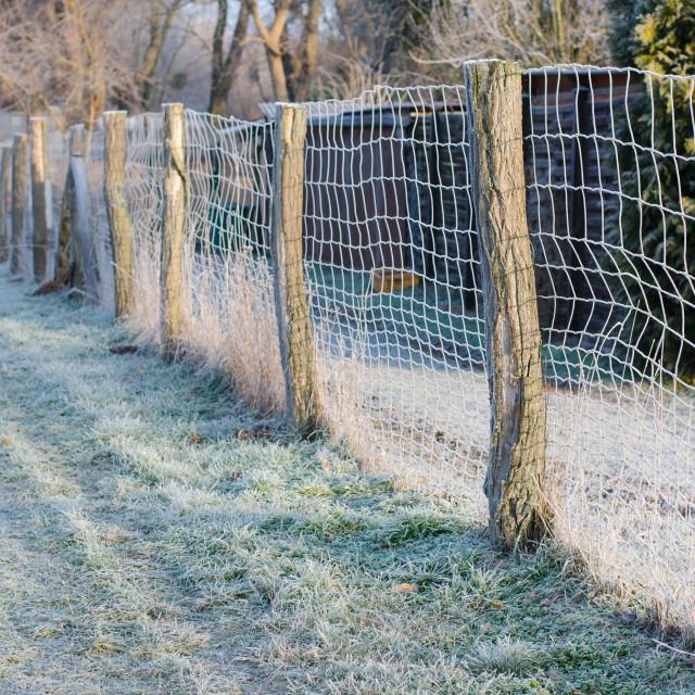 """Winter Fence"" stock image"