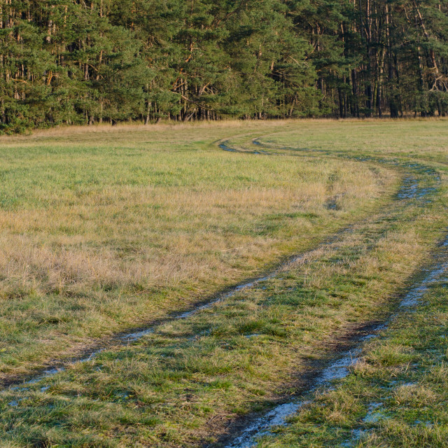 """Frozen Path"" stock image"