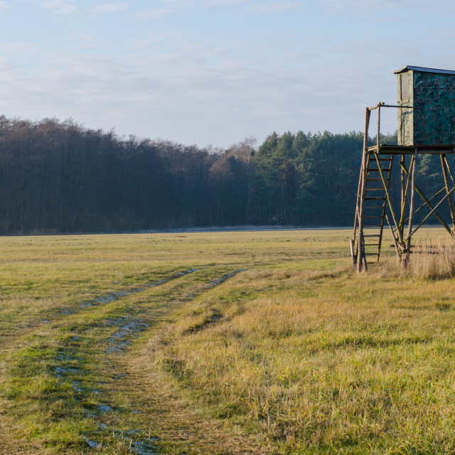 """""""Passing By A Hunting Stand"""" stock image"""