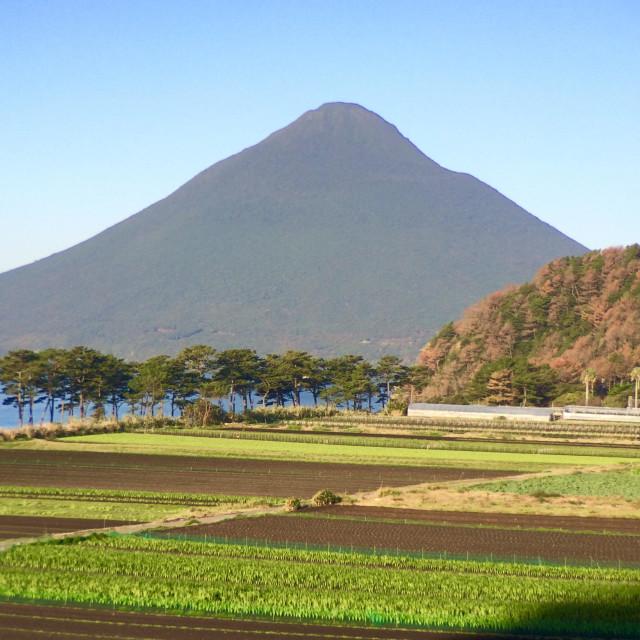 """Farms below 924 meter high, Mt. Kaimondake volcano, Satsuma peninsula, Kyushu, Japan"" stock image"