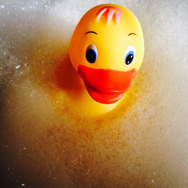 """Image of a yellow plastic duck floating on foamy bubbles"" stock image"