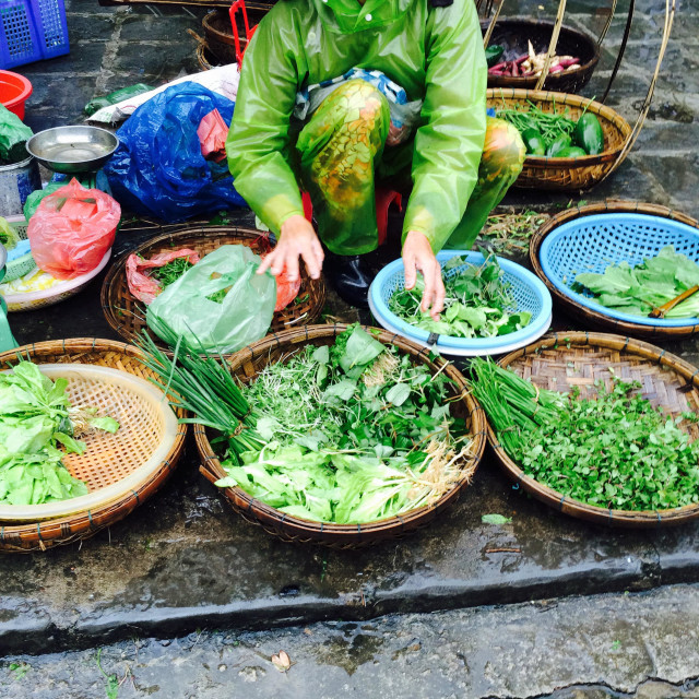 """Food Vendor in the rain at the market in Hoi An"" stock image"