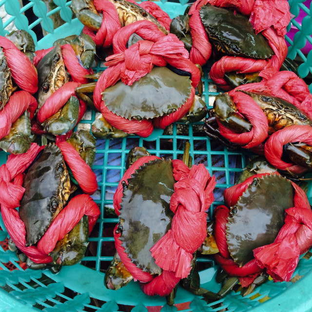 """Fresh Crabs on sale at Ben Thanh Market in Ho Chi Minh City"" stock image"