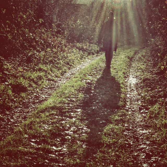 """""""Walking in the Suns Rays"""" stock image"""