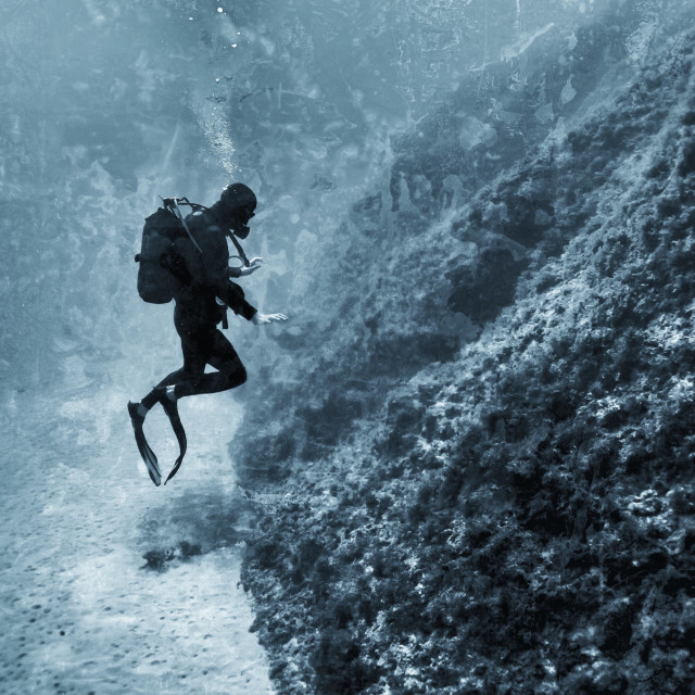 """""""Young male scuba diver hovering in mid water"""" stock image"""