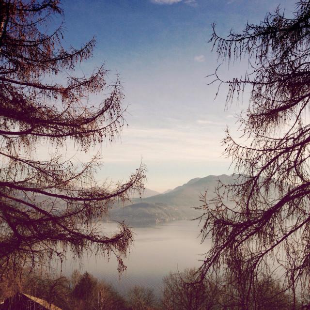 """""""Lago Maggiore III"""" stock image"""