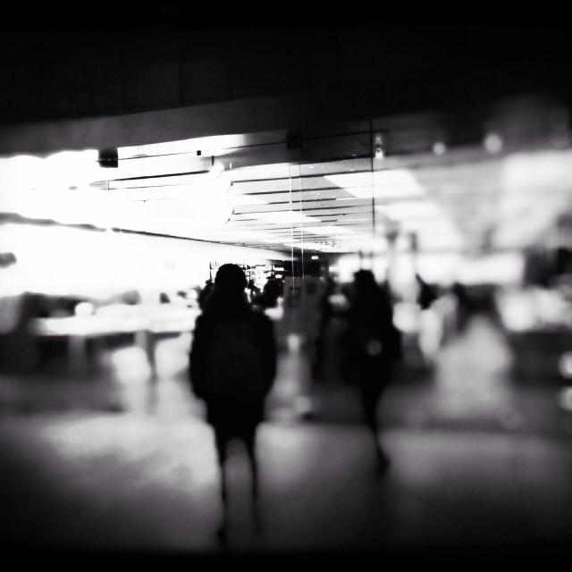 """""""Apple Storefront, Trinity Leeds Shopping centre, Leeds, West Yorkshire, UK"""" stock image"""