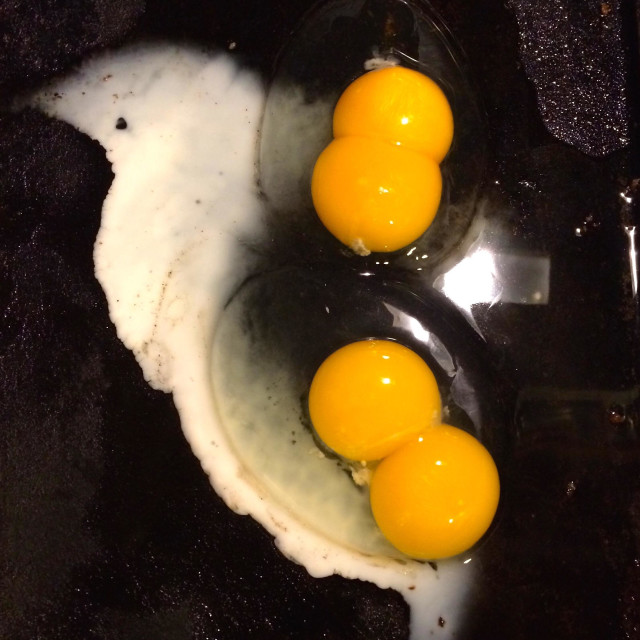 """Two double yolk eggs on a griddle"" stock image"