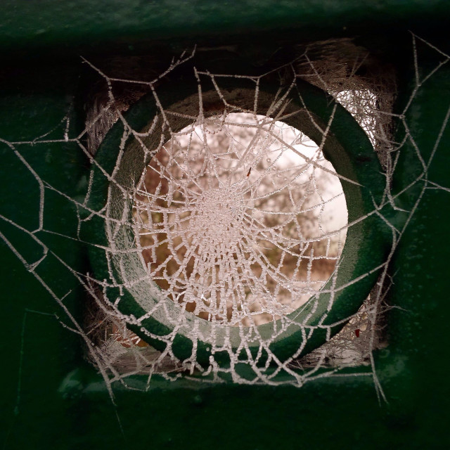 """Complex frozen spider web in a railing circle in Warwick, England on a cold winter day."" stock image"