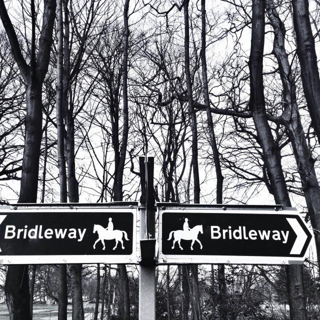 """Bridleway Black & White"" stock image"