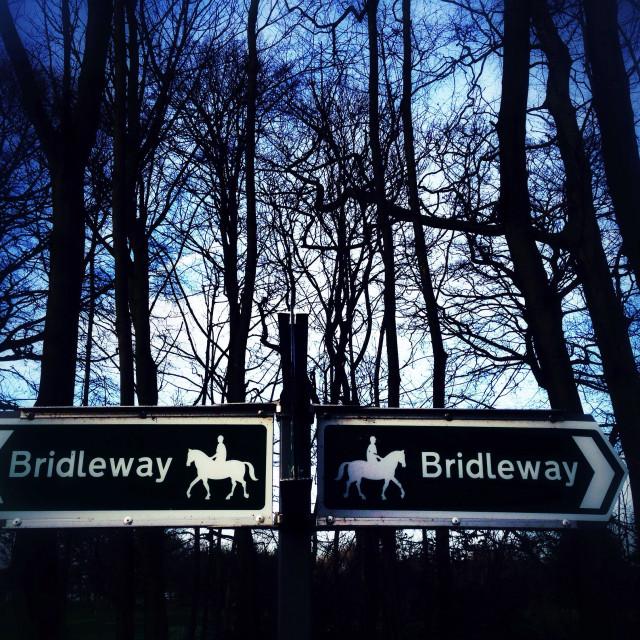 """Bridleway Tinted"" stock image"