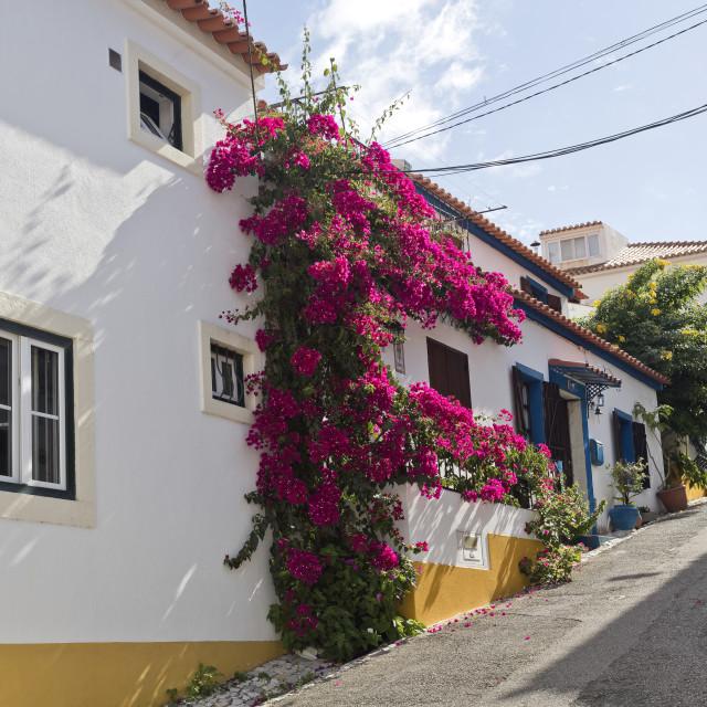 """Azeitao Traditional Architecture"" stock image"