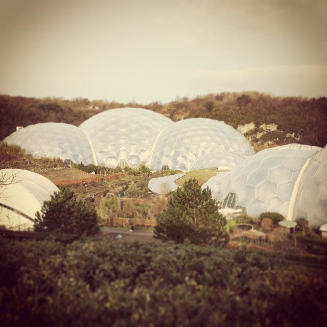 """""""Eden project in Cornwall UK"""" stock image"""