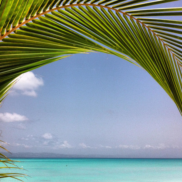 """Anse Darfour Beach, Haiti"" stock image"