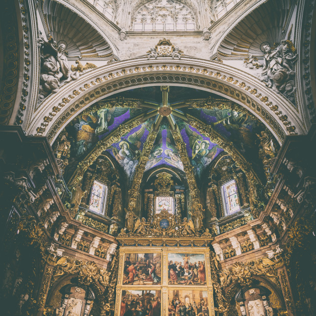 """""""Metropolitan Cathedral–Basilica of the Assumption of Our Lady of Valencia"""" stock image"""