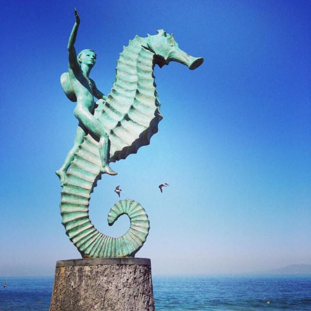 """""""Seahorse on malecon of Puerto Vallarta."""" stock image"""