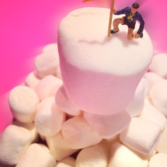 """""""A mountain climber figure plants his flag atop a stack of marshmallows"""" stock image"""