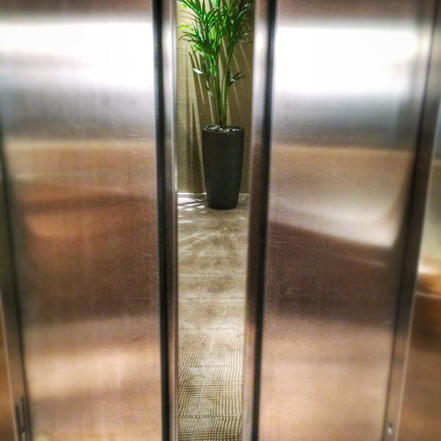 """Lift doors opening showing a foyer with a plant"" stock image"