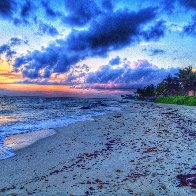 """""""Mexican beach at sunrise"""" stock image"""