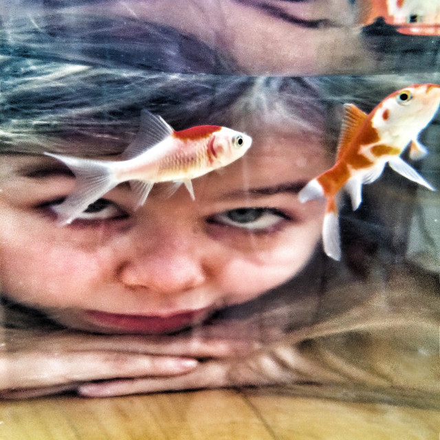 """Girl Watching Goldfish"" stock image"