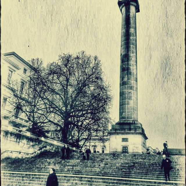 """""""Duke of York Column as seen from the Mall, City of Westminster, Central London, England, United Kingdom, Europe"""" stock image"""