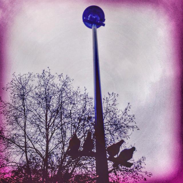 """Plastic birds on a streetlamp"" stock image"