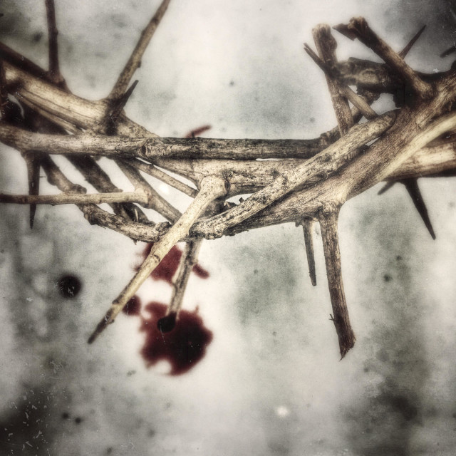 """""""Crown of thorns with blood."""" stock image"""